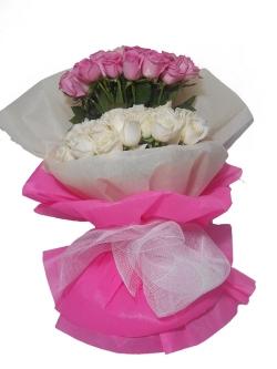 Pink Cindrella