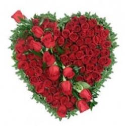 Valentines Rose Special