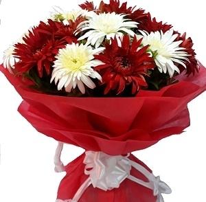 Valentines Red & White