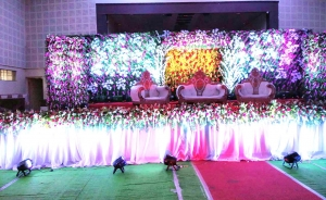Wedding Decor Theme 14