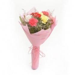 Mix Carnations