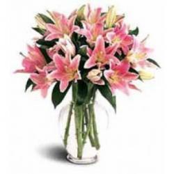 Lilies Joy